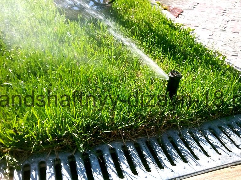 Ландшафтный-дизайн--Рулонный-газон-Устройство-газона-Автополив-Автоматический-полив-Водоем-Пруды-Фонтаны-Благоустройство-Озеленение-Зимние-посадки-Ижевск-00014