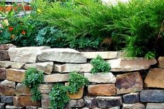 Ландшафтный-дизайн--Рулонный-газон-Устройство-газона-Автополив-Автоматический-полив-Водоем-Пруды-Фонтаны-Благоустройство-Озеленение-Зи-мние-посадки-Ижевск-(566)