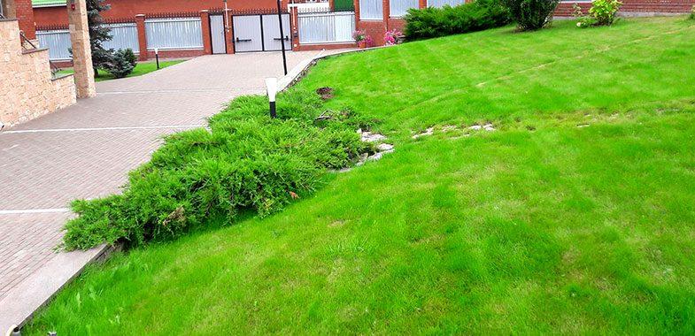 Система полива Автоматический полив Рулонный газон Укладка брусчатки Озеленение Благоустройство Ижевск